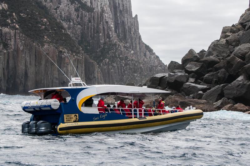 Cruise Boat Tasman Island